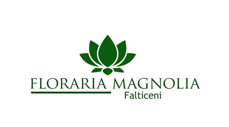 FLORARIA MAGNOLIA FALTICENI - DECORATIUNI NUNTA - NUNTASUCEAVA.RO